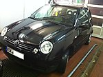 Black_Pearl2002's Lupo
