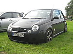 Luporacer1's Lupo