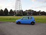 Mickygirl1990's Lupo
