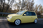 Lupo_Chris's Lupo