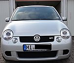 brues's Lupo