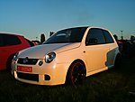 cube's Lupo