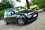 HE_Lupo's Lupo