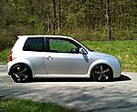 Lupo GTI's Lupo