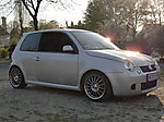 TeSty's Lupo